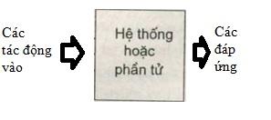 tu-dong-hoa